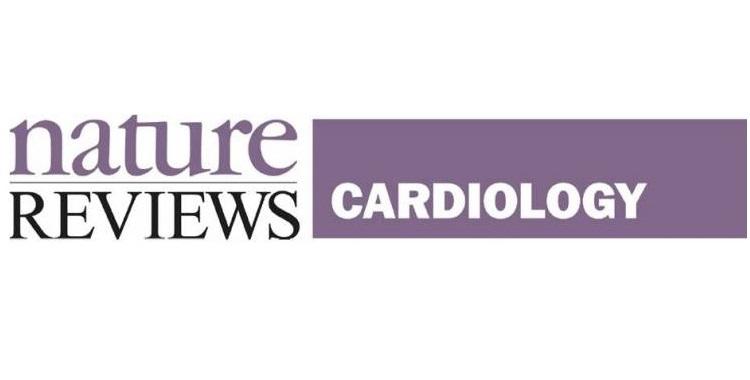 Sicurezza ed efficacia della terapia con statine